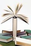 ανθίζοντας βιβλίο Στοκ εικόνα με δικαίωμα ελεύθερης χρήσης