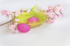 Ανθίζοντας κλάδος και ρόδινα αυγά στην πράσινη χλόη στο καλάθι Στοκ εικόνα με δικαίωμα ελεύθερης χρήσης