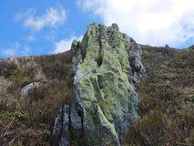 Ανθίζοντας πέτρες Gorgan Στοκ Εικόνες
