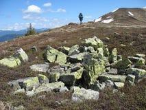 Ανθίζοντας πέτρες Gorgan Στοκ φωτογραφίες με δικαίωμα ελεύθερης χρήσης