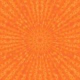 ανθίζοντας πορτοκάλια Στοκ Εικόνες