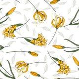 Ανθίζοντας ρεαλιστικά απομονωμένα λουλούδια Συρμένη χέρι διανυσματική απεικόνιση Καθιερώνον τη μόδα άνευ ραφής floral σχέδιο γεωμ διανυσματική απεικόνιση