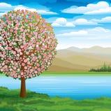 ανθίζοντας ρόδινο δέντρο Διανυσματική απεικόνιση