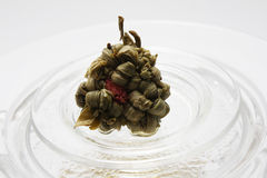 ανθίζοντας τσάι Στοκ εικόνα με δικαίωμα ελεύθερης χρήσης