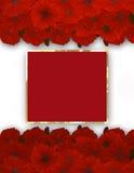 ανθίστε το πλαίσιο σύνορα floral Ανθοδέσμη της παπαρούνας Στοκ εικόνες με δικαίωμα ελεύθερης χρήσης