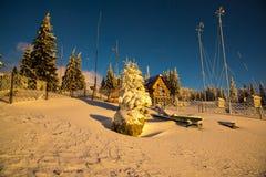 ανθίστε το χρονικό χειμώνα χιονιού Στοκ φωτογραφίες με δικαίωμα ελεύθερης χρήσης