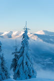 ανθίστε το χρονικό χειμώνα χιονιού Στοκ εικόνες με δικαίωμα ελεύθερης χρήσης