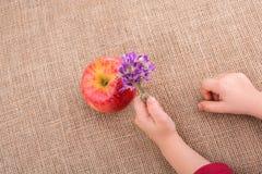 Ανθοδέσμη λουλουδιών εκμετάλλευσης χεριών εκτός από ένα μήλο Στοκ Εικόνες