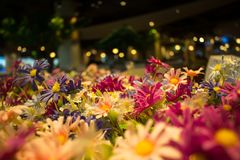 Ανθοδέσμη λουλουδιών θαμπάδων σχεδίου και υπόβαθρο θαμπάδων bokeh Στοκ φωτογραφία με δικαίωμα ελεύθερης χρήσης