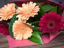 Ανθοδέσμη λουλουδιών φιαγμένη από χρυσάνθεμα, διακοσμητικές εγκαταστάσεις μαργαριτών για την κάρτα γενεθλίων, πρόσκληση Λουλούδια Στοκ φωτογραφίες με δικαίωμα ελεύθερης χρήσης