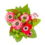 Ανθοδέσμη λουλουδιών Anemone Στοκ Φωτογραφία