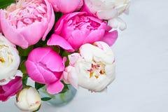 Ανθοδέσμη ρόδινου και άσπρου peony τα λουλούδια εμβλημάτων ανασκόπησης διαμορφώνουν λίγη ρόδινη σπείρα Τοπ άποψη, γ Στοκ φωτογραφία με δικαίωμα ελεύθερης χρήσης