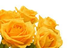 Ανθοδέσμη τριαντάφυλλων Στοκ Φωτογραφία