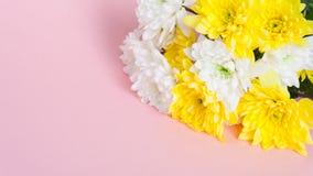 Ανθοδέσμη των άσπρων και κίτρινων χρυσάνθεμων σε έναν χλωμό - ρόδινο υπόβαθρο Στοκ φωτογραφία με δικαίωμα ελεύθερης χρήσης