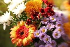 Ανθοδέσμη των λουλουδιών θερινών κήπων στοκ εικόνες