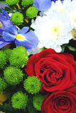 Ανθοδέσμη των λουλουδιών Στοκ Φωτογραφίες