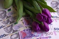 Ανθοδέσμη των πορφυρών τουλιπών και του ουκρανικού hryvnia εθνικού νομίσματος, χρήματα - ένα δώρο για τις διακοπές, έννοια στοκ εικόνα