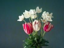 Ανθοδέσμη των τουλιπών και των άσπρων λουλουδιών anemones στο κυανό υπόβαθρο Στοκ φωτογραφία με δικαίωμα ελεύθερης χρήσης