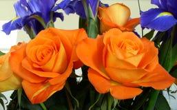 Ανθοδέσμη των τριαντάφυλλων και του πορτοκαλιού και μπλε θέματος της Iris Στοκ εικόνα με δικαίωμα ελεύθερης χρήσης
