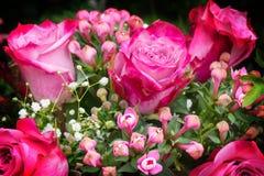 Ανθοδέσμη των τριαντάφυλλων, των ρόδινων τριαντάφυλλων και των σπόρων gypsofilia Στοκ φωτογραφία με δικαίωμα ελεύθερης χρήσης