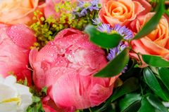 Ανθοδέσμη των φρέσκων ρόδινων peonies και των τριαντάφυλλων στοκ φωτογραφίες