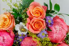 Ανθοδέσμη των φρέσκων ρόδινων peonies και των τριαντάφυλλων στοκ φωτογραφία