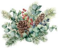 Ανθοδέσμη Watercolor με τα φύλλα ευκαλύπτων, τον κώνο, τον κλάδο έλατου και τα μούρα Το χέρι χρωμάτισε το πράσινο brunch, τα κόκκ ελεύθερη απεικόνιση δικαιώματος