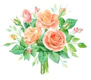Ανθοδέσμη Watercolor των λουλουδιών Το χέρι χρωμάτισε τη floral σύνθεση που απομονώθηκε στο άσπρο υπόβαθρο κόκκινος τρύγος ύφους  απεικόνιση αποθεμάτων