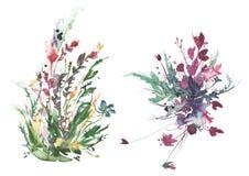 Ανθοδέσμη Watercolor των λουλουδιών, όμορφος αφηρημένος παφλασμός του χρώματος, απεικόνιση μόδας Άγρια χλόη, λουλούδια, παπαρούνα απεικόνιση αποθεμάτων