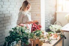 Ανθοκόμος γυναικών που παίρνει τις εικόνες των λουλουδιών με το κινητό τηλέφωνο στοκ εικόνες με δικαίωμα ελεύθερης χρήσης