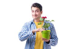 Ανθοκόμος κηπουρών με ένα λουλούδι σε ένα δοχείο που απομονώνεται στο άσπρο backgr Στοκ φωτογραφία με δικαίωμα ελεύθερης χρήσης