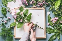 Ανθοκόμος στο διάστημα εργασίας Θηλυκά χέρια που κάνουν τη ρύθμιση λουλουδιών με τους πράσινους κλάδους και τα ρόδινα λουλούδια Στοκ Εικόνα