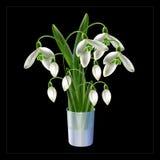 Ανθοδέσμη από τα πρώτα λουλούδια άνοιξη Στοκ Εικόνες