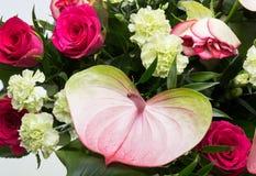 Ανθοδέσμη από τα φρέσκα κόκκινα τριαντάφυλλα και anthurium Στοκ Φωτογραφία