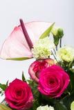 Ανθοδέσμη από τα φρέσκα κόκκινα τριαντάφυλλα και anthurium Στοκ εικόνες με δικαίωμα ελεύθερης χρήσης
