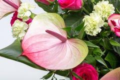 Ανθοδέσμη από τα φρέσκα κόκκινα τριαντάφυλλα και anthurium Στοκ Φωτογραφίες