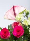 Ανθοδέσμη από τα φρέσκα κόκκινα τριαντάφυλλα και anthurium Στοκ εικόνα με δικαίωμα ελεύθερης χρήσης