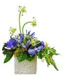 Ανθοδέσμη από τις ορχιδέες και το αραβικό λουλούδι αστεριών (arabi Ornithogalum Στοκ φωτογραφία με δικαίωμα ελεύθερης χρήσης