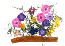 Ανθοδέσμη εφαρμογής των ξηρών λουλουδιών Στοκ εικόνα με δικαίωμα ελεύθερης χρήσης