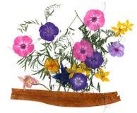 Ανθοδέσμη εφαρμογής των ξηρών λουλουδιών Στοκ Φωτογραφίες