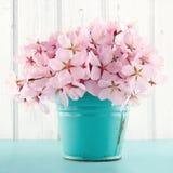 Ανθοδέσμη λουλουδιών ανθών κερασιών στοκ εικόνα