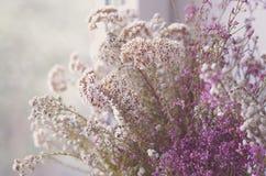 Ανθοδέσμη λουλουδιών και χορταριών Στοκ φωτογραφίες με δικαίωμα ελεύθερης χρήσης