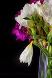 Ανθοδέσμη λουλουδιών κρίνων στο βάζο στο μαύρο υπόβαθρο Στοκ φωτογραφία με δικαίωμα ελεύθερης χρήσης