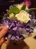 Ανθοδέσμη λουλουδιών Hydrangea Στοκ Εικόνες