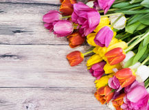 Ανθοδέσμη πολύ ρόδινου κίτρινου κόκκινου τουλιπών και του λευκού και του ροζ στοκ εικόνα