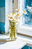 Ανθοδέσμη του βάζου μαργαριτών στον πίνακα κοντά στο παράθυρο Στοκ φωτογραφίες με δικαίωμα ελεύθερης χρήσης