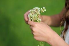 Ανθοδέσμη του τριφυλλιού στα χέρια κοριτσιών Στοκ Φωτογραφία