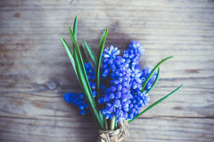 Ανθοδέσμη του armeniacum Muscari (μπλε υάκινθος σταφυλιών) στο αγροτικό ξύλινο υπόβαθρο Στοκ Φωτογραφία