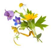 Ανθοδέσμη των άγριων λουλουδιών τομέων, χρώματα Πάσχας, που απομονώνονται στοκ φωτογραφίες