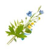 Ανθοδέσμη των άγριων λουλουδιών τομέων, χρώματα Πάσχας, που απομονώνονται στοκ φωτογραφία